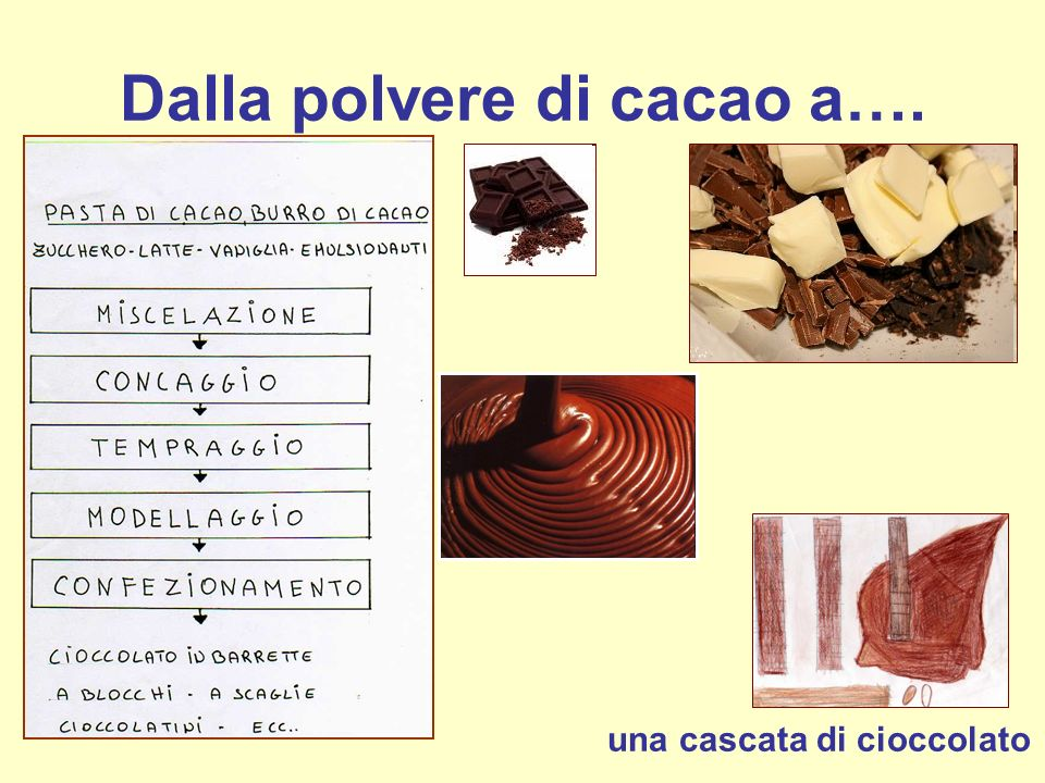 Dalla polvere di cacao a….