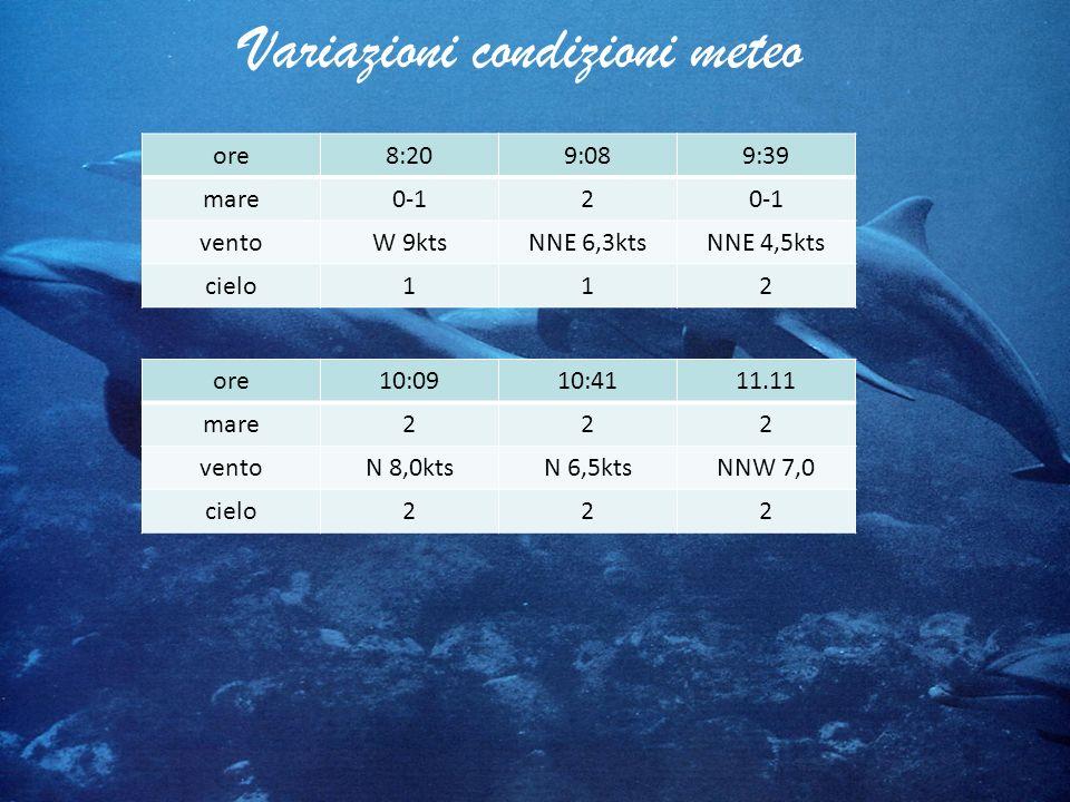 Variazioni condizioni meteo