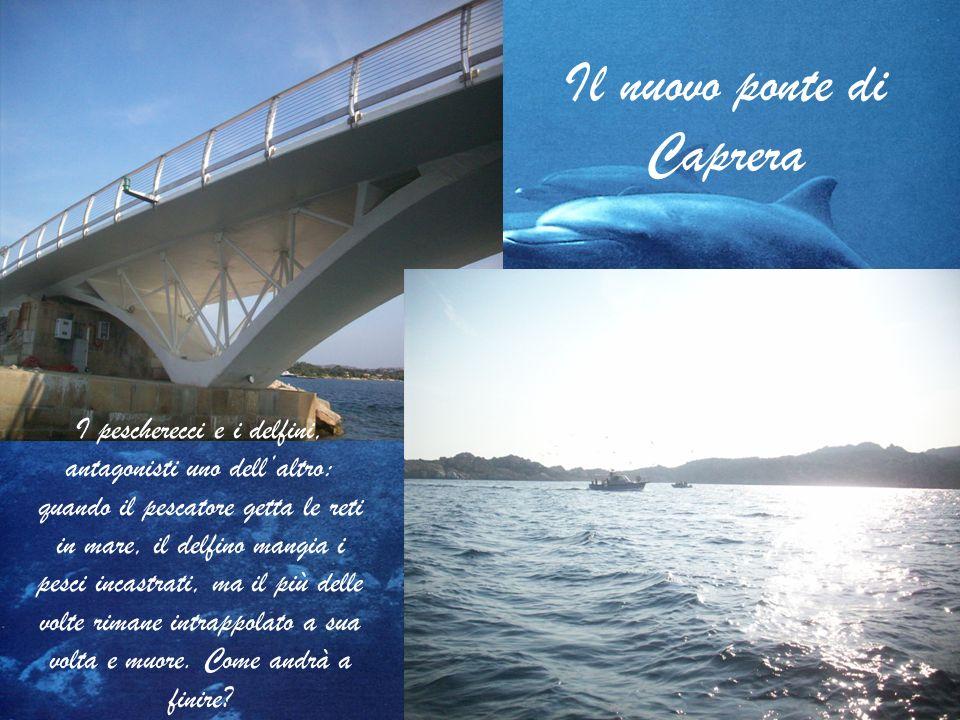 Il nuovo ponte di Caprera