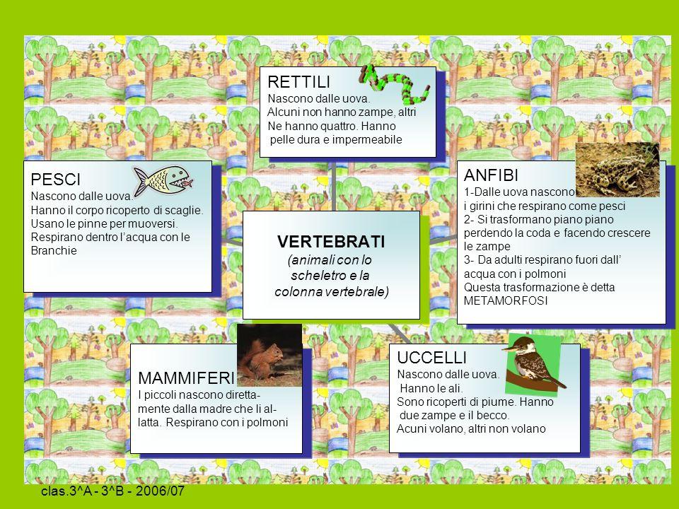 Sc. Primaria La Tina clas.3^A - 3^B - 2006/07