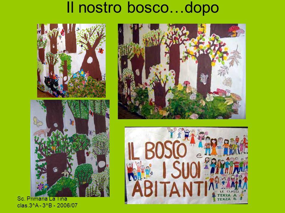 Il nostro bosco…dopo Sc. Primaria La Tina clas.3^A - 3^B - 2006/07
