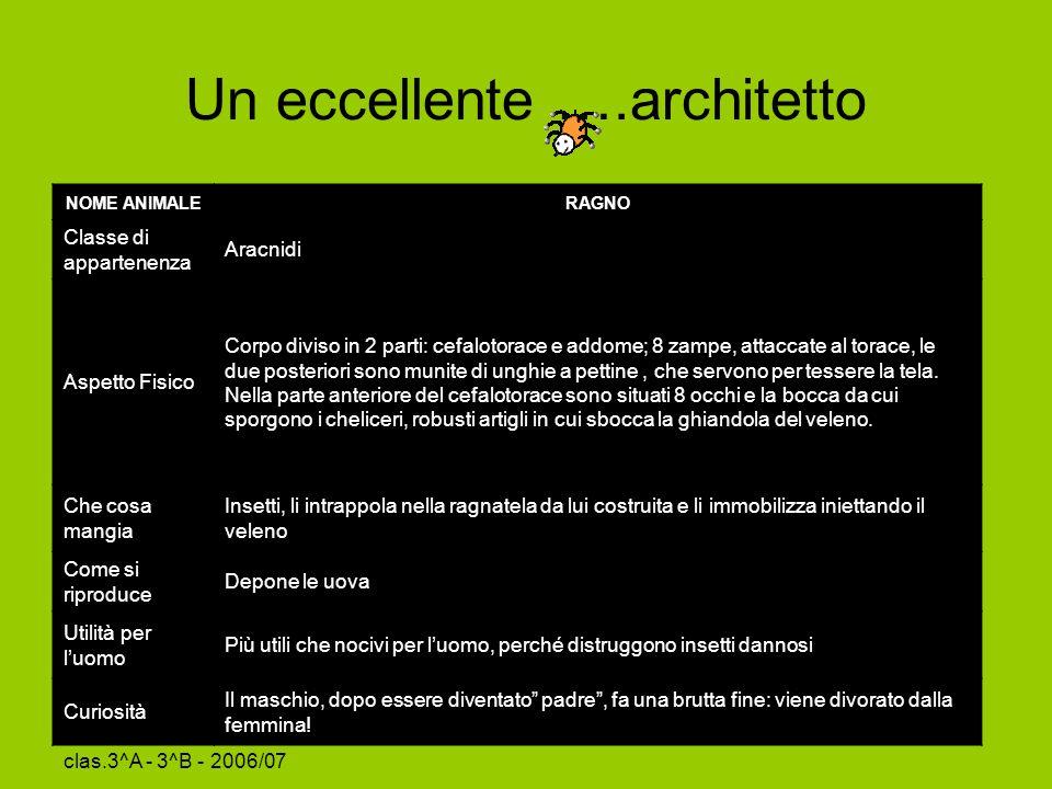 Un eccellente ….architetto