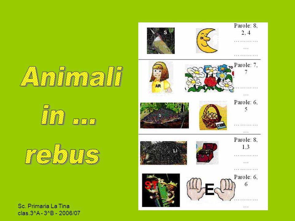 Animali in … rebus Sc. Primaria La Tina clas.3^A - 3^B - 2006/07