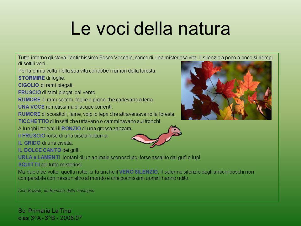 Le voci della natura Sc. Primaria La Tina clas.3^A - 3^B - 2006/07