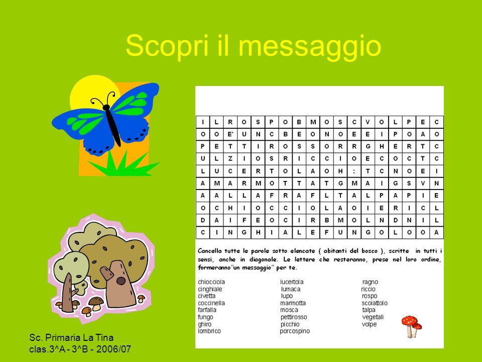 Scopri il messaggio Sc. Primaria La Tina clas.3^A - 3^B - 2006/07