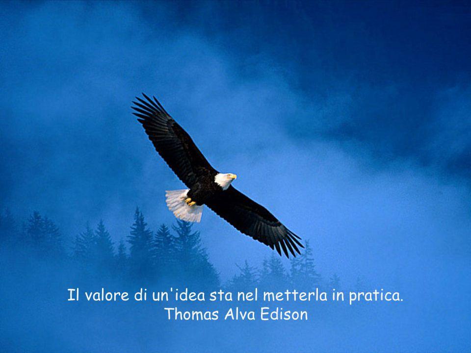 Il valore di un idea sta nel metterla in pratica.