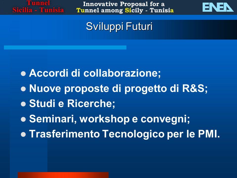 Sviluppi Futuri Accordi di collaborazione; Nuove proposte di progetto di R&S; Studi e Ricerche; Seminari, workshop e convegni;