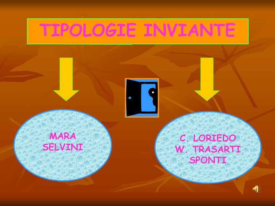 TIPOLOGIE INVIANTE MARA SELVINI C. LORIEDO W. TRASARTI SPONTI