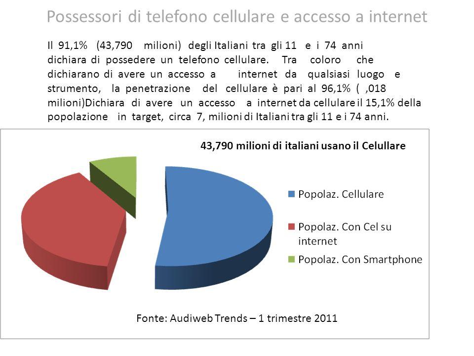 Possessori di telefono cellulare e accesso a internet