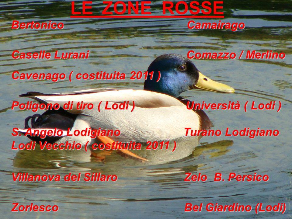 LE ZONE ROSSE Caselle Lurani Comazzo / Merlino Bertonico Camairago