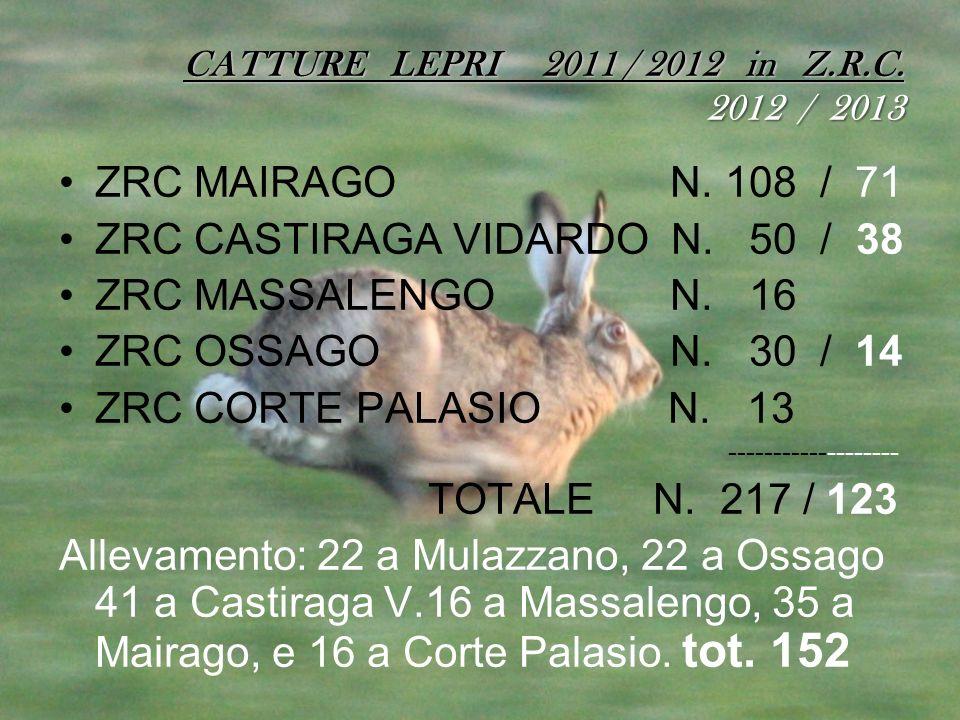 ZRC CASTIRAGA VIDARDO N. 50 / 38 ZRC MASSALENGO N. 16