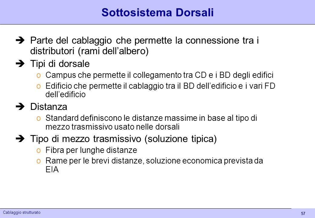 Sottosistema DorsaliParte del cablaggio che permette la connessione tra i distributori (rami dell'albero)