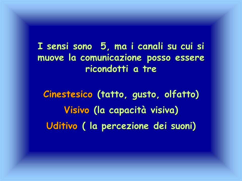 Cinestesico (tatto, gusto, olfatto) Visivo (la capacità visiva)