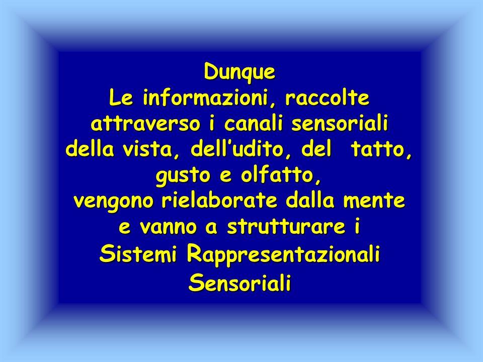 Dunque Le informazioni, raccolte attraverso i canali sensoriali della vista, dell'udito, del tatto, gusto e olfatto, vengono rielaborate dalla mente e vanno a strutturare i Sistemi Rappresentazionali Sensoriali