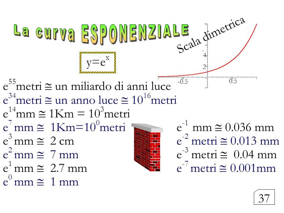 La curva ESPONENZIALE Scala dimetrica y=ex