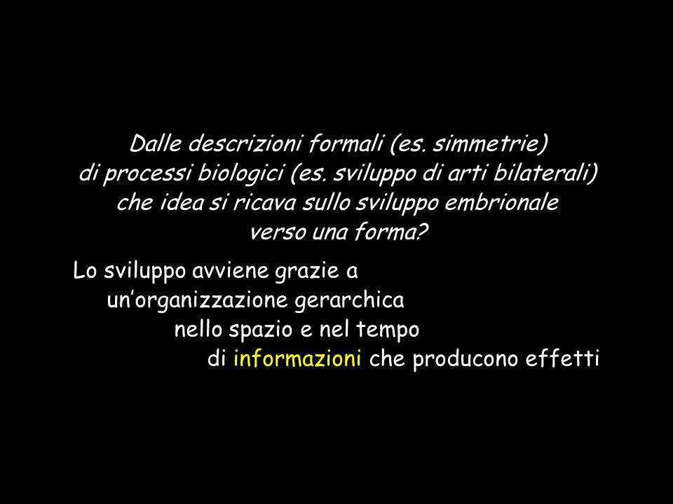 Dalle descrizioni formali (es. simmetrie)