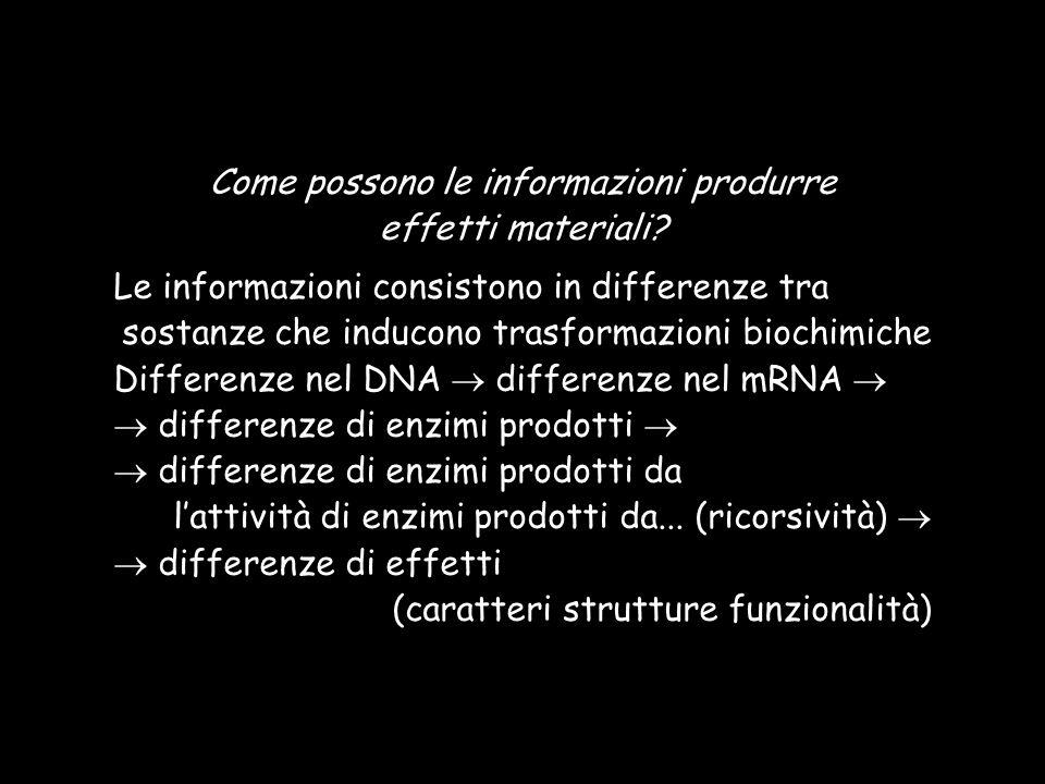 Come possono le informazioni produrre