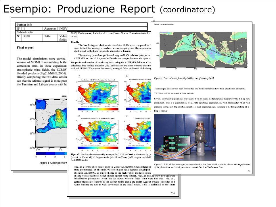 Esempio: Produzione Report (coordinatore)