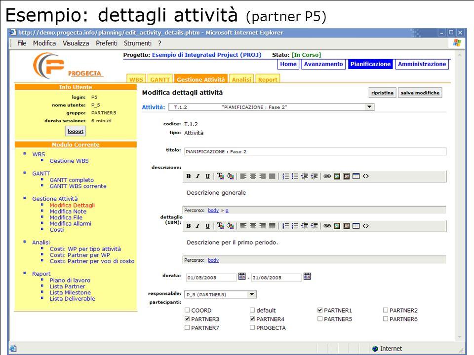 Esempio: dettagli attività (partner P5)