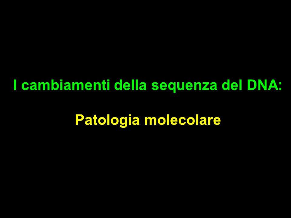 I cambiamenti della sequenza del DNA: Patologia molecolare