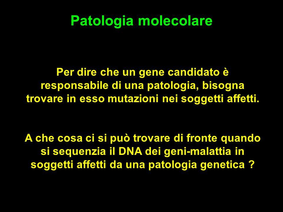 Patologia molecolare Per dire che un gene candidato è responsabile di una patologia, bisogna trovare in esso mutazioni nei soggetti affetti.