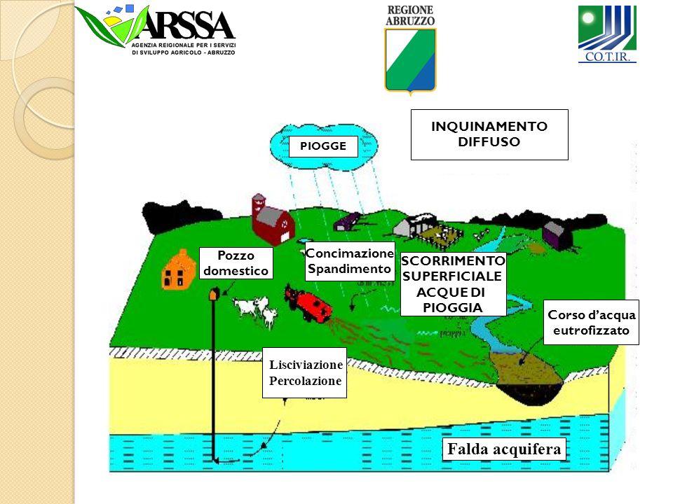 Quali sono le possibili Fonti di inquinamento Agricolo