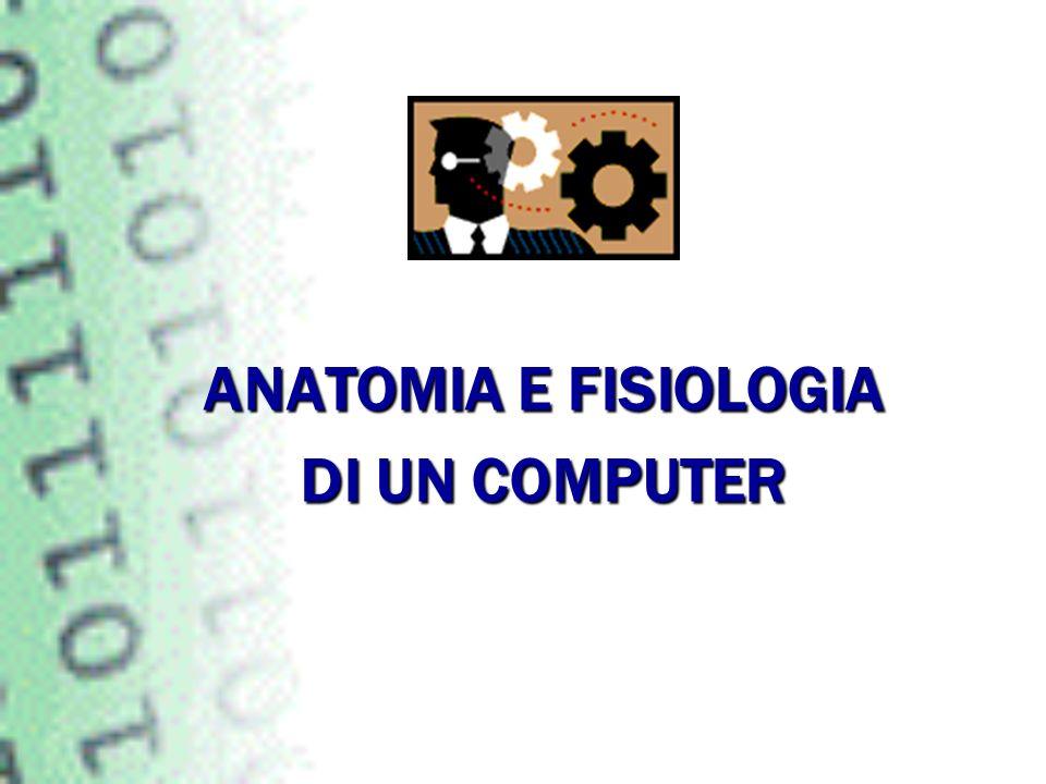 ANATOMIA E FISIOLOGIA DI UN COMPUTER