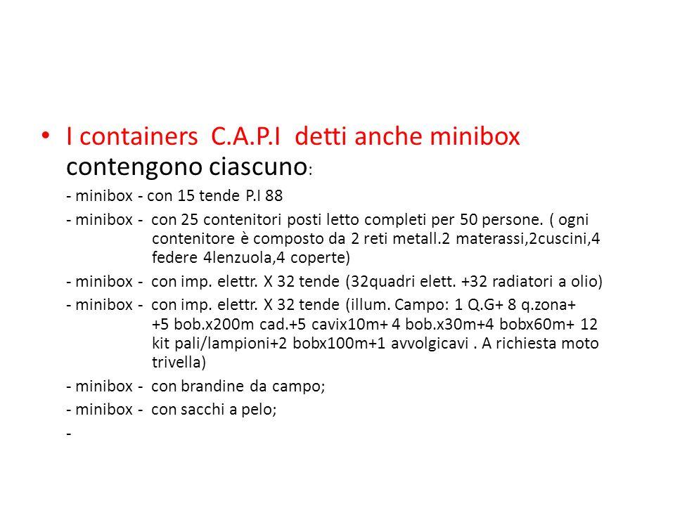 I containers C.A.P.I detti anche minibox contengono ciascuno: