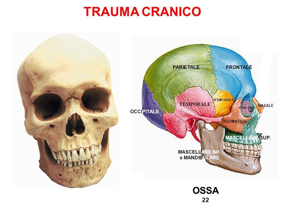 TRAUMA CRANICO OSSA 22 PARIETALE FRONTALE TEMPORALE OCCIPITALE