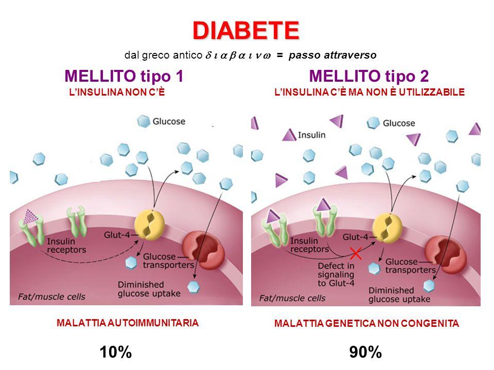 DIABETE MELLITO tipo 1 MELLITO tipo 2 10% 90%