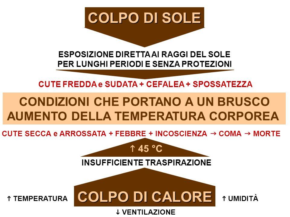 COLPO DI SOLE COLPO DI CALORE