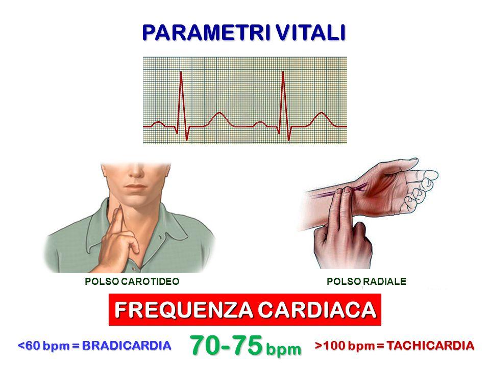 70-75 bpm PARAMETRI VITALI FREQUENZA CARDIACA <60 bpm = BRADICARDIA