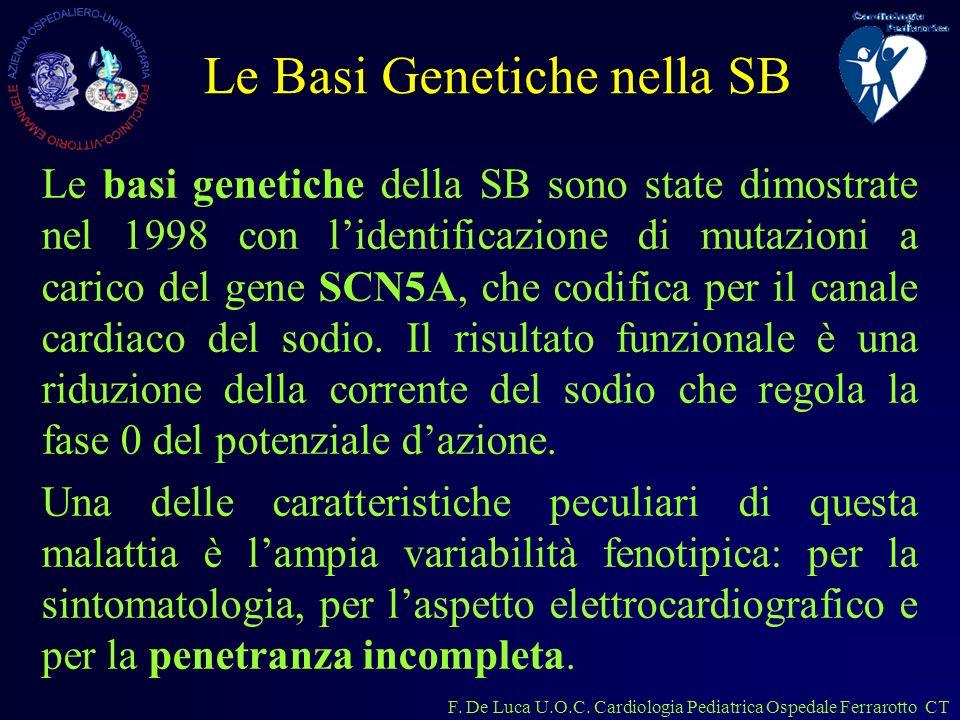 Le Basi Genetiche nella SB