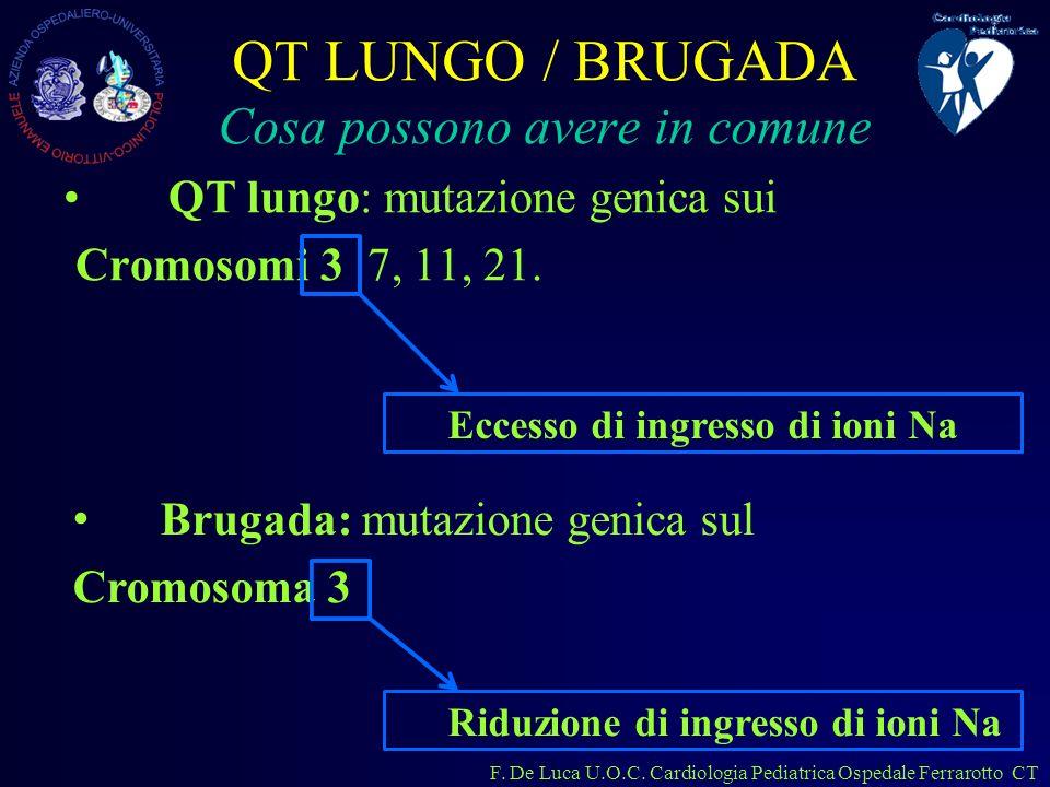 QT LUNGO / BRUGADA Cosa possono avere in comune
