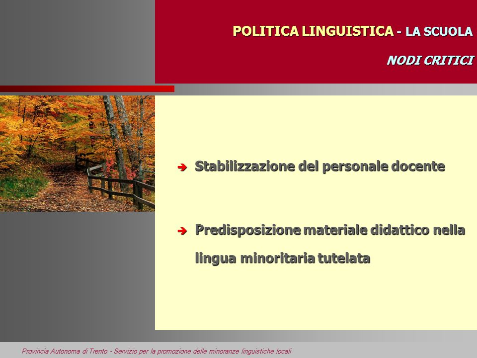 POLITICA LINGUISTICA - LA SCUOLA NODI CRITICI