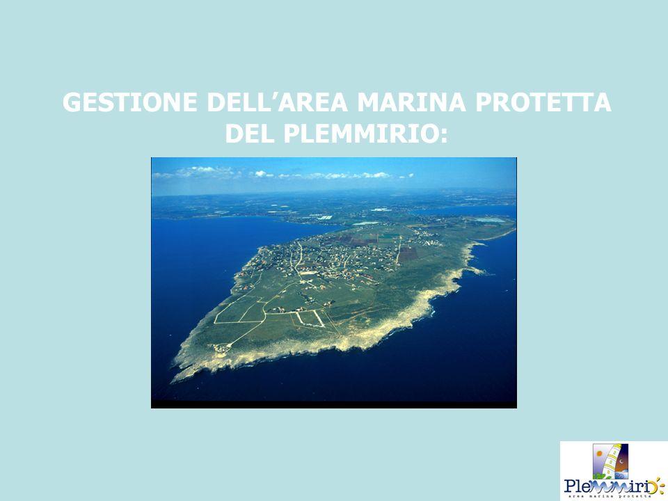 GESTIONE DELL'AREA MARINA PROTETTA DEL PLEMMIRIO: