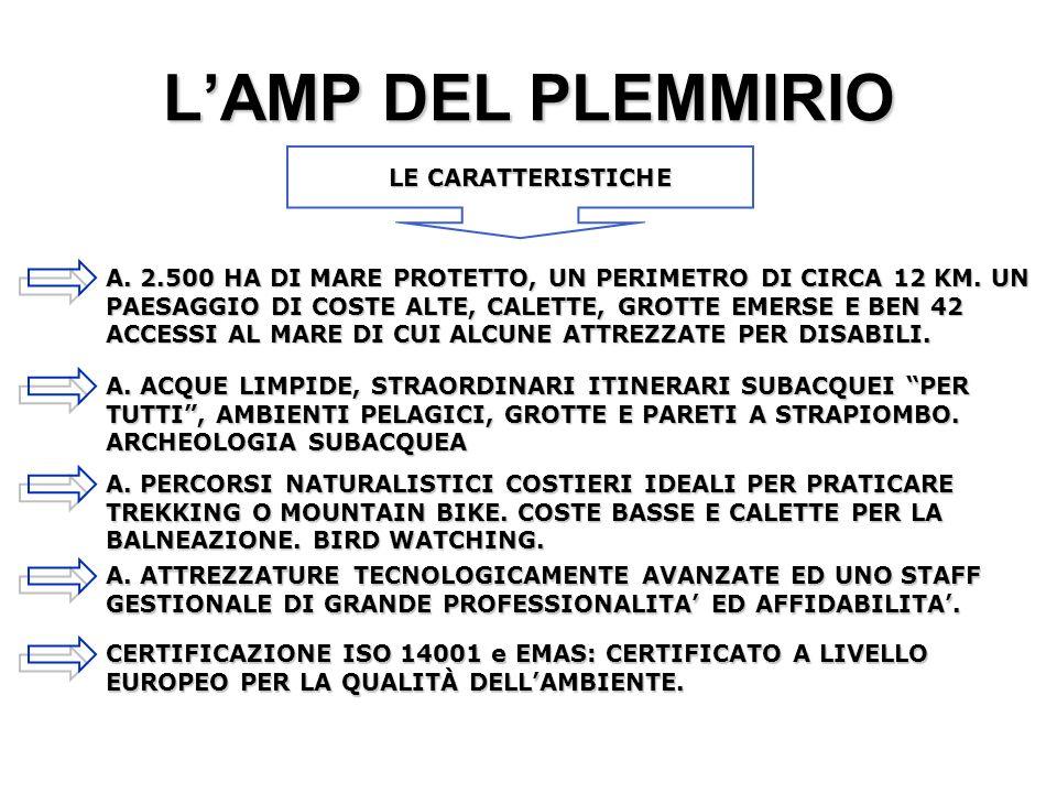 L'AMP DEL PLEMMIRIO LE CARATTERISTICHE