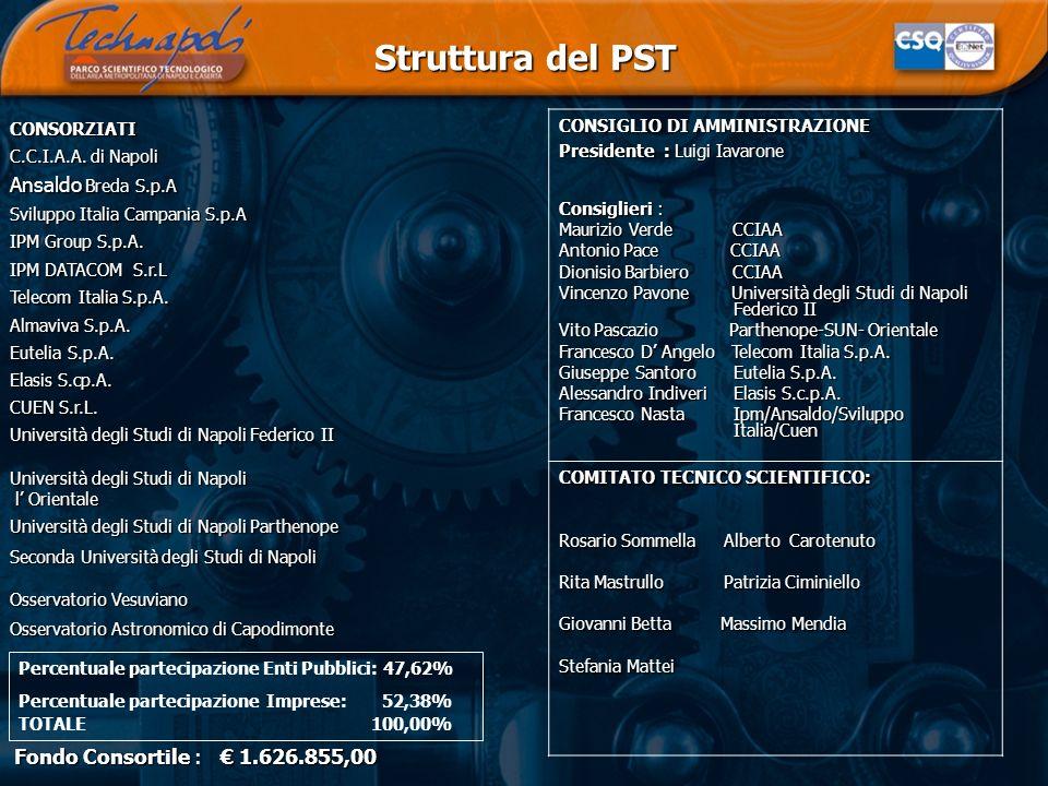 Struttura del PST Ansaldo Breda S.p.A