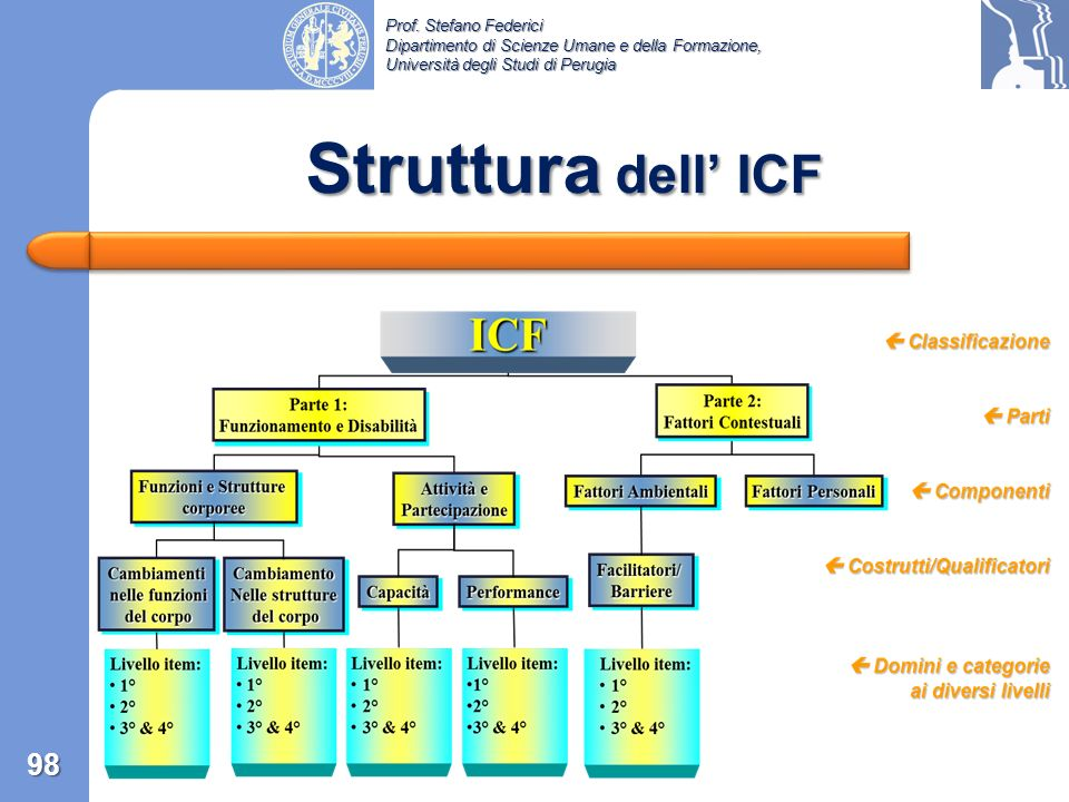 Struttura dell' ICF