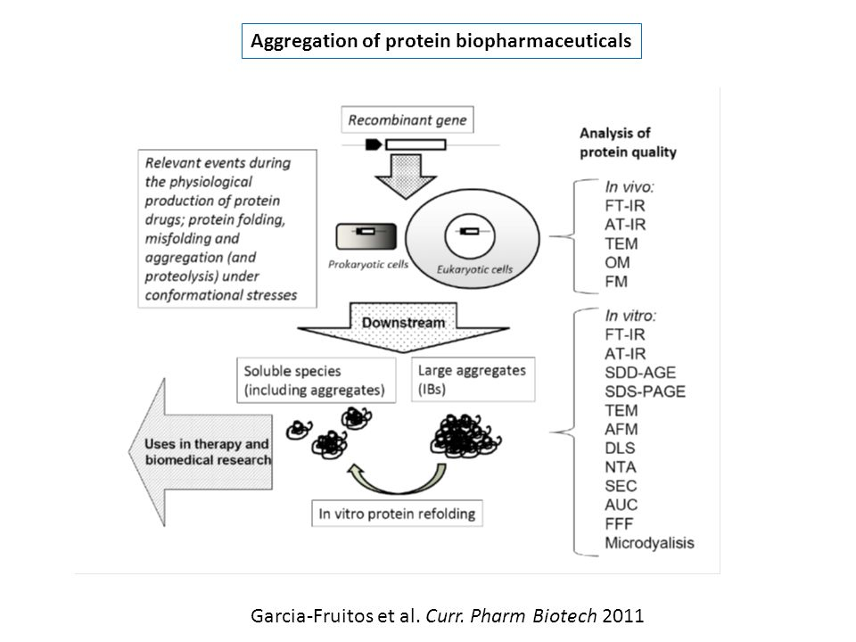 Aggregation of protein biopharmaceuticals