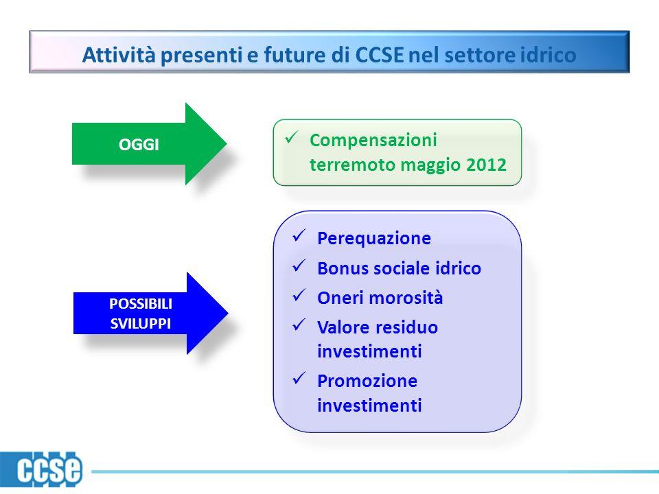 Attività presenti e future di CCSE nel settore idrico