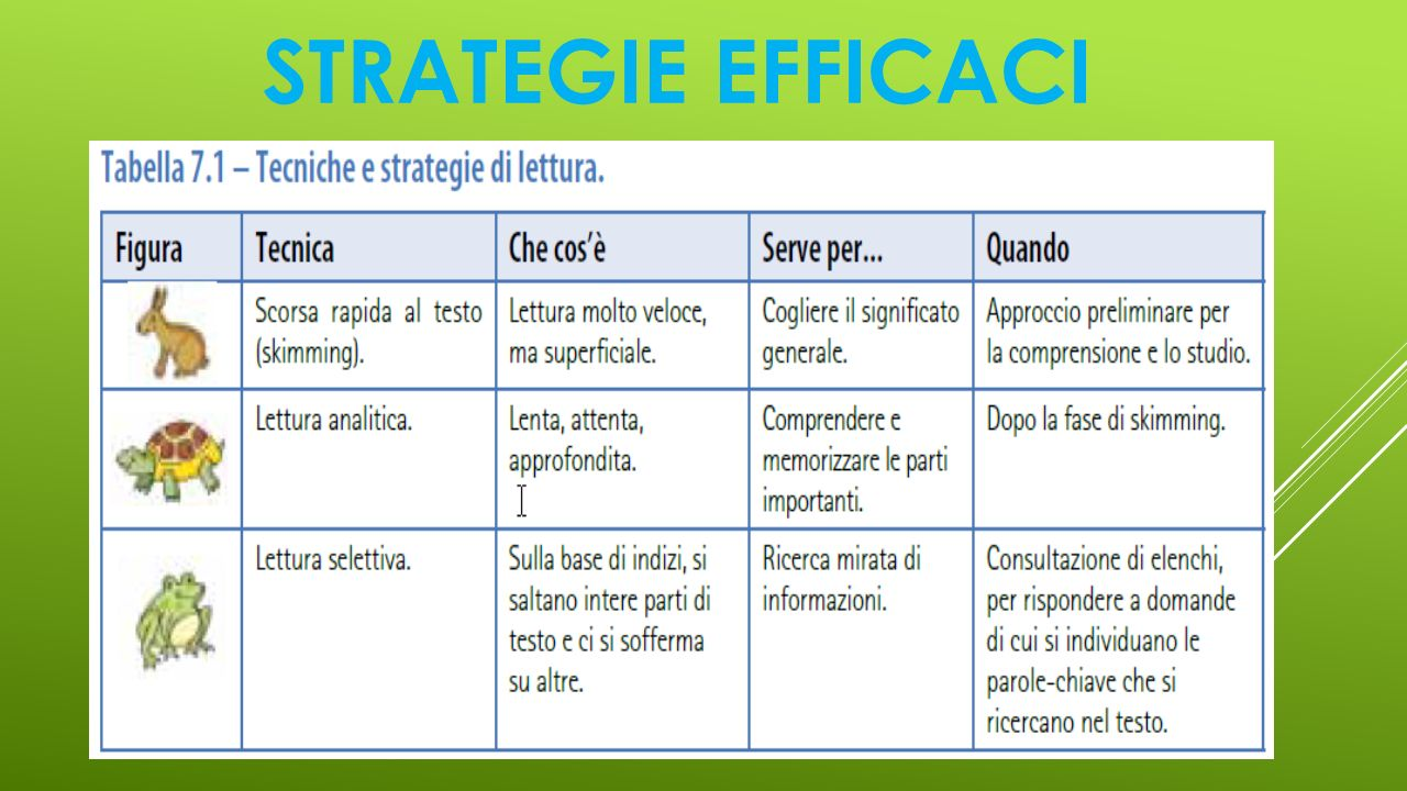STRATEGIE EFFICACI