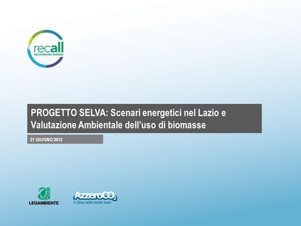 PROGETTO SELVA: Scenari energetici nel Lazio e Valutazione Ambientale dell'uso di biomasse