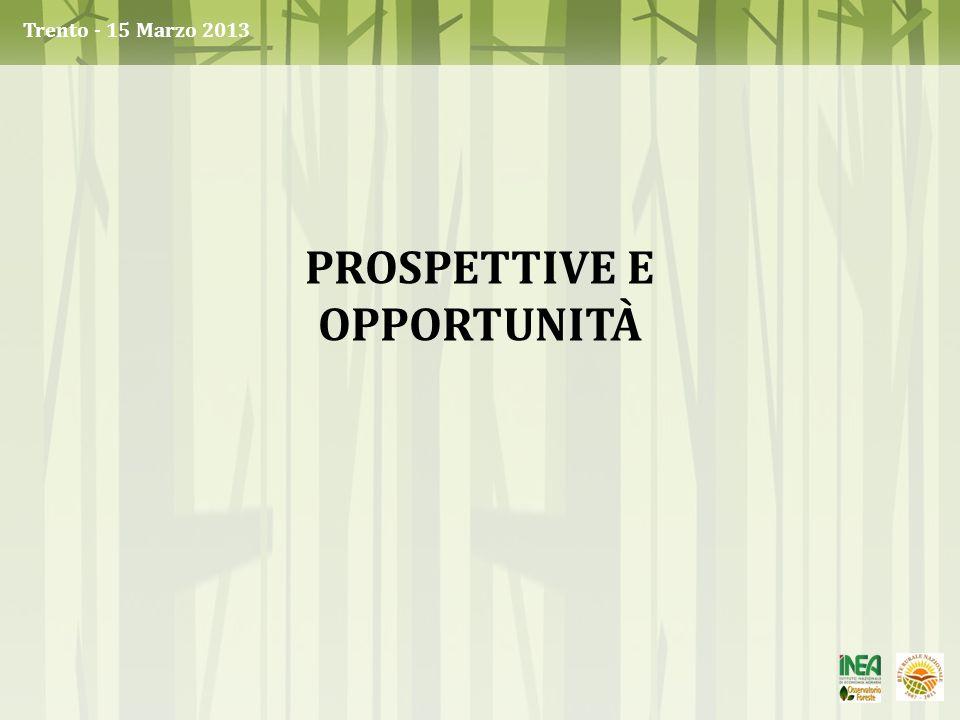 Prospettive e opportunità