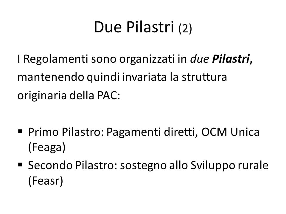 Due Pilastri (2) I Regolamenti sono organizzati in due Pilastri,