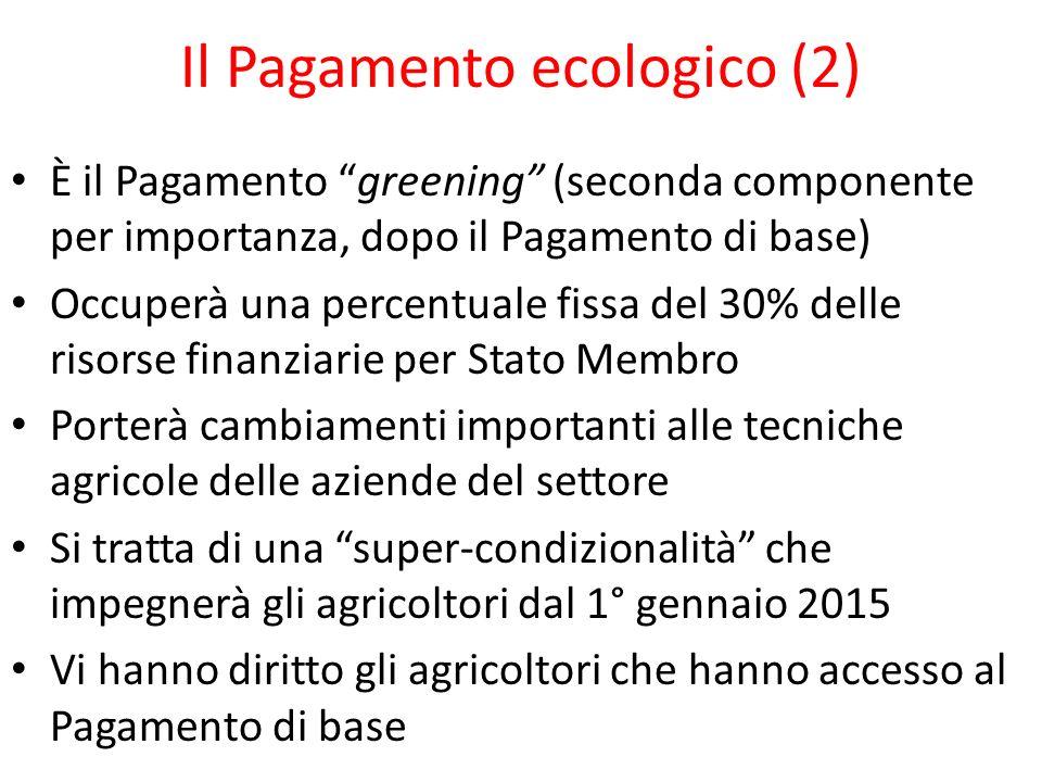 Il Pagamento ecologico (2)