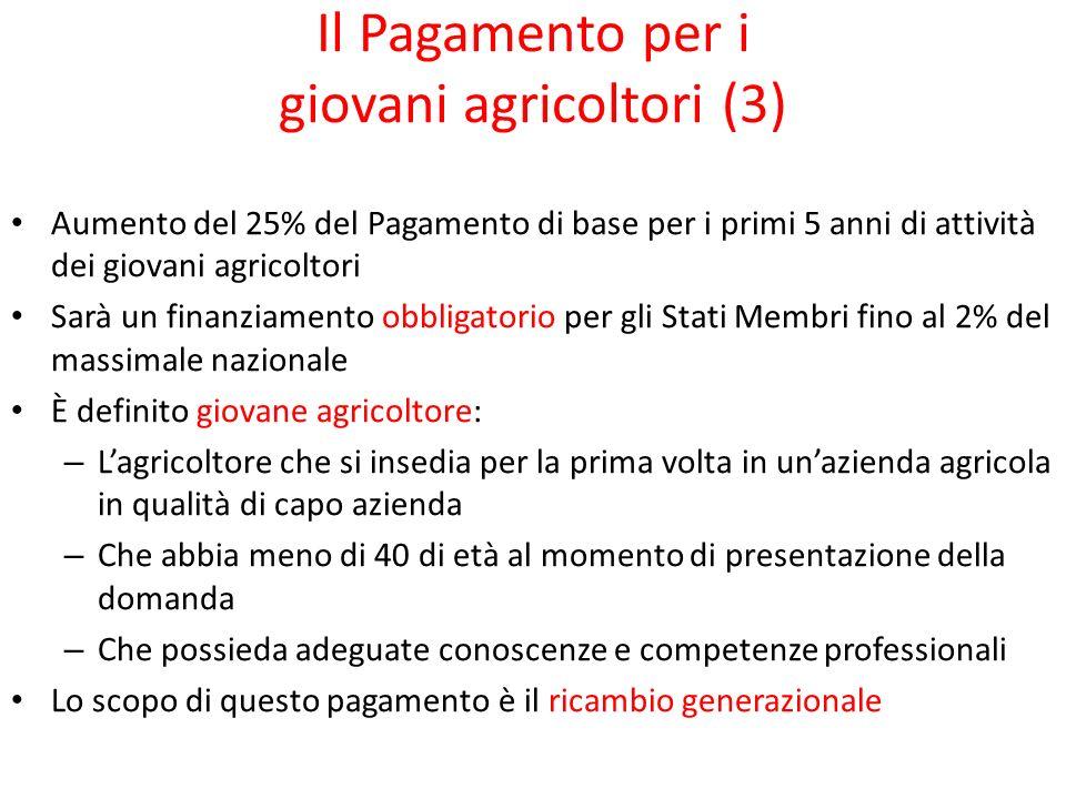 Il Pagamento per i giovani agricoltori (3)