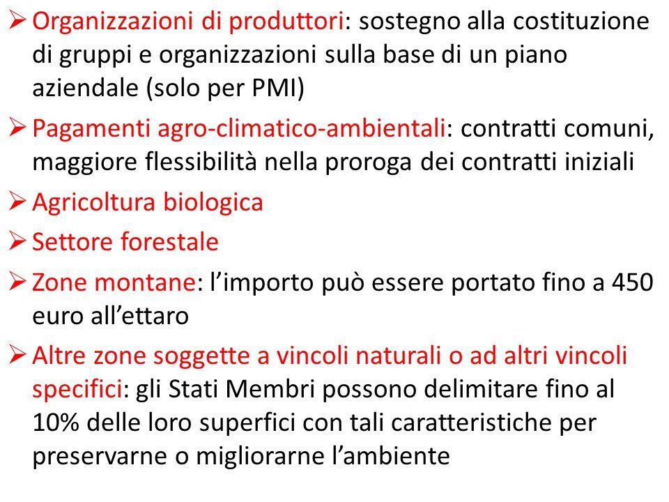 Organizzazioni di produttori: sostegno alla costituzione di gruppi e organizzazioni sulla base di un piano aziendale (solo per PMI)
