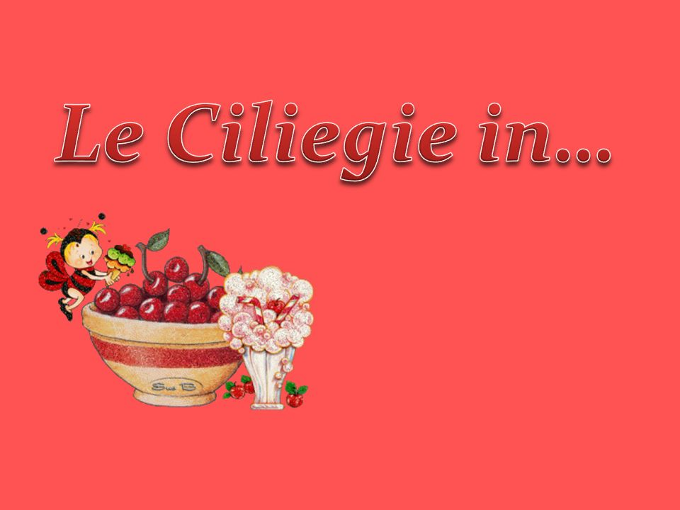 Le Ciliegie in…