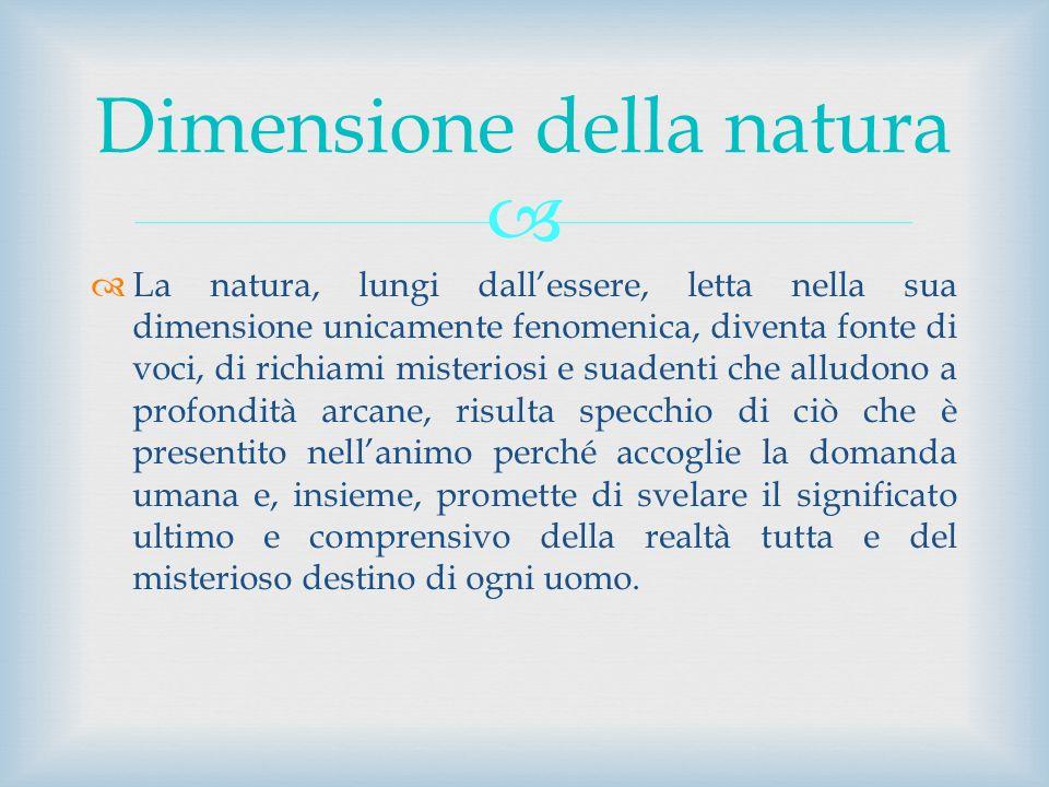 Dimensione della natura
